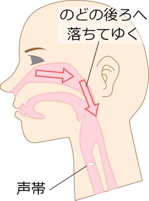 後鼻漏の図解